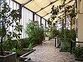 Botanique - binnen.jpg