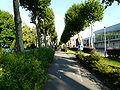 Boulevard Liberté Cambrai.JPG
