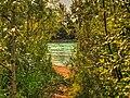 Bowmont Park Hike (14790520806).jpg