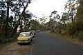 Bowral NSW 2576, Australia - panoramio (141).jpg