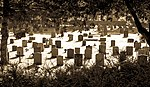 Braunton (Devon, UK), St Brannock's Church -- 2013 -- 9.jpg