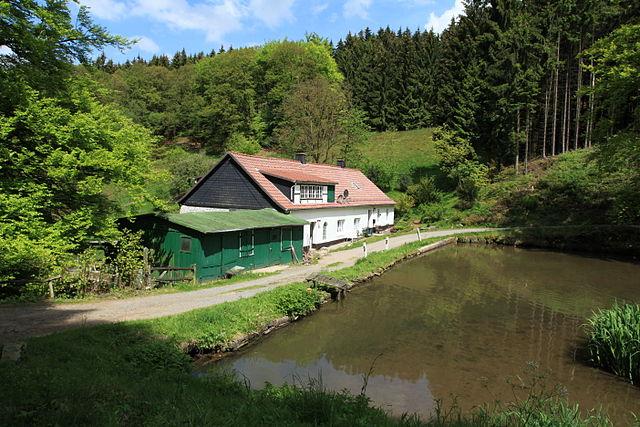 Die Mühle im Jahr 2011
