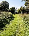 Bridleway Quendon Essex England 2.jpg