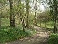 Bridleway and bridge through Furzefield Wood - geograph.org.uk - 399765.jpg
