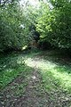 Bridleway to Spout Wood. - geograph.org.uk - 533420.jpg
