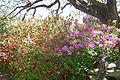 Brookgreen Gardens43.jpg
