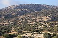 Bsaira District, Jordan - panoramio (76).jpg