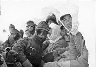 Battles of Narvik - German Gebirgsjägers in the mountains at Narvik