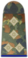 Bundeswehr-OF-2-SH.png