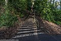 Bushy Park, Dublin (8389514583).jpg