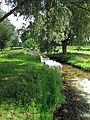Bushy Park, Teddington-Hampton Court. - panoramio.jpg