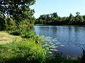 Busserolles étang bord GR4.JPG