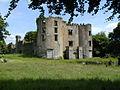 Buttevant Barry Castle (geograph 2335827).jpg