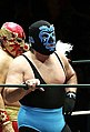 CMLL Nov 30 Mano Negra and Solar.jpg