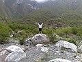Cañon de Guitarritas 1 - panoramio.jpg