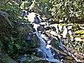 Cachoeira no Rio Taquari - Paraty - Costa Verde - Brasil - panoramio (3).jpg