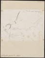 Callomystax gagata - 1700-1880 - Print - Iconographia Zoologica - Special Collections University of Amsterdam - UBA01 IZ14600149.tif