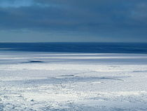 Baie d'Hudson au Cape Churchill dans le parc national Wapusk