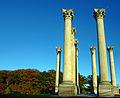 Capitol columns (5350973470).jpg
