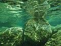 Cave di Età Romana di capo Testa viste sott'acqua 08.jpg