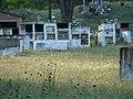Cementerio pasando Potreros de Garay - panoramio.jpg