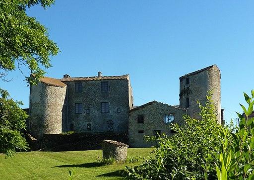Château de Saint-Michel-de-Vax (2)