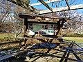 Chadwick Arboretum (31820790283).jpg