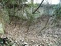 Chalk pit or quarry near Kelk Hill - geograph.org.uk - 1117725.jpg