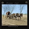 Chinese Cart, Manchuria, ca. 1882-ca. 1936 (imp-cswc-GB-237-CSWC47-LS8-008).jpg
