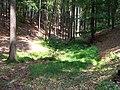 Choceň, severní strana vrchu Čertův dub.jpg