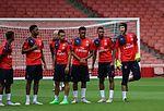 Chuba Akpom Francis Coquelin Alex Iwobi Jeff Reine Adelaide Petr Cech Arsenal Members' Day 2015 (20108514682).jpg