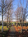 Churchyard, Holy Trinity, Wavertree (2).JPG