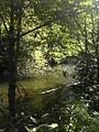 Cierny Vah River1.JPG