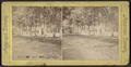 Clarendon Hotel Park, Saratoga, N.Y, from Robert N. Dennis collection of stereoscopic views 2.png