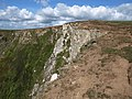Cliff edge, The Beacon - geograph.org.uk - 1511294.jpg