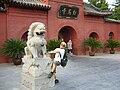 Climbing the Lion.jpg