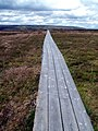 Clough Head to Peaknaze Moor Walkway - geograph.org.uk - 495184.jpg