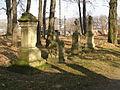 Cmentarz rzym.-kat zwany Starym w Krośnie A-41 z 05.01.1984.jpg