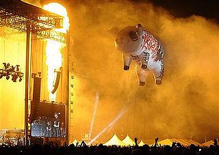 Pink Floyd pigs
