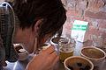 Coffee Cupping-4.jpg
