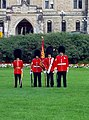 Colour guard of the Canadian Grenadier Guards.jpeg