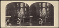 Conservatory view, N.Y. The Threee Graces, from Robert N. Dennis collection of stereoscopic views.png