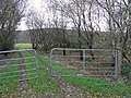 Copse, Tircur - geograph.org.uk - 1565278.jpg