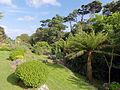 Cornwall Fae32.jpg