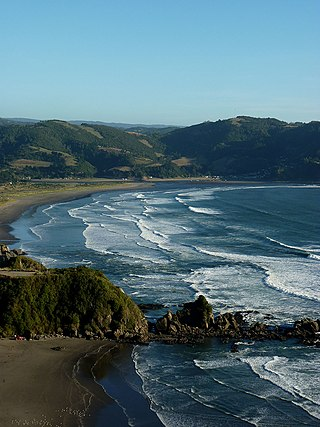 Costa Mehuin - Flickr - rgamper.jpg