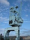 Crane beside Blue Boar Creek - geograph.org.uk - 2156511.jpg