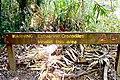 Crocodile warning sign at North Zoe creek, Hinchinbrook island.jpg