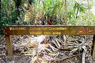 Hinchinbrook Island National Park - Crocodile warning sign