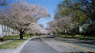 Anne Arundel County, Maryland - Crofton Parkway in Crofton in early March