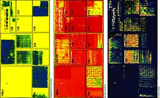 False color - These three false-color images demonstrate the application of remote sensing in precision agriculture: The left image shows vegetation density and the middle image presence of water (greens / blue for wet soil and red for dry soil). The right image shows where crops are under stress, as is particularly the case in fields 120 and 119 (indicated by red and yellow pixels). These fields were due to be irrigated the following day.